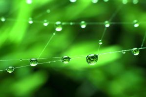 Green Dots by MarcosRodriguez