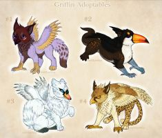 $15 Griffin Adoptables! OPEN ONE LEFT by LeoNoy