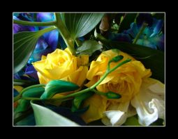 YeLLow Roses by DxBGirLy