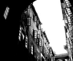 Girls' Dorm, Wuhan University by isotopez