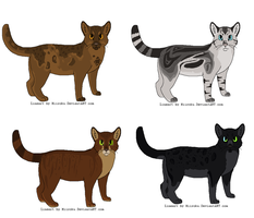 Cat Adoptables by seagxll