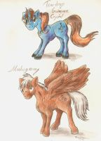 Teardrop and Mahogany by FoxOFWar