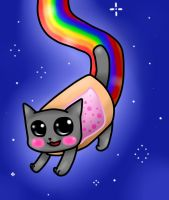 ~The Poptart Cat~ by Invader-Panda