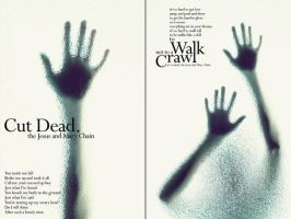 to walk not to a crawl by boQir