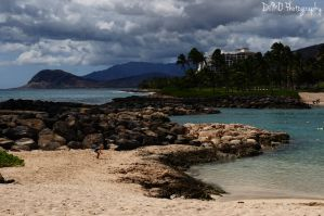 Painted Beach by AllAboutDianne