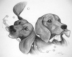 Coonhounds by Canyx