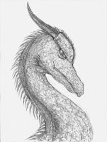 Penciled Dragon by DeathT-2
