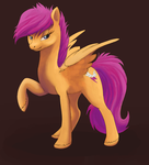 Grown up Scoot by Kallarmo