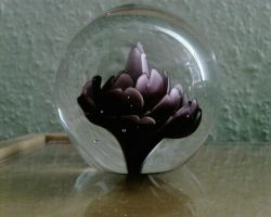 glass sphere by priesteres-stock