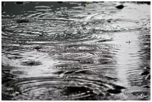 Black Water by Momenti-Photo