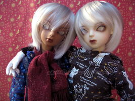 The Twins' New Wigs by odoll
