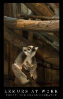 Lemurs at Work: Crane Operator by Lupinicious