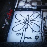 Snow flower. by ceejayessee