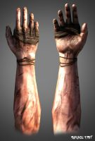 First person hands by Bawarner