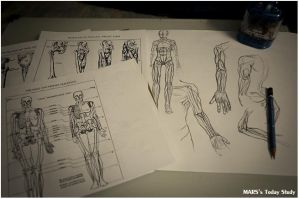 27082011 - with anatomy by luvlessparadise