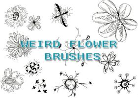 Weird Flower Brushes by gabijax
