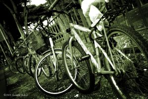 Bicycles parked at the fence by sarthahirah