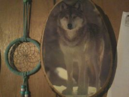 Wolf on a log frame by AmericanWolf016