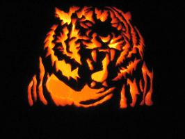 Tiger Pumpkin 3 by ShonnaKay