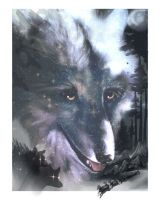 white Fang 1 by Ginseng-fox