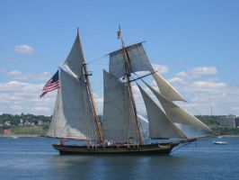 Tall Ships-Pride of Baltimore2 by Aeltari