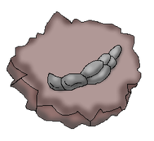 Rattle Fossil (CoC Fossil) by Dianamond