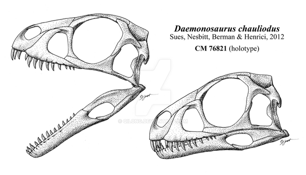 Skull of the Demon of the Chinle by Qilong
