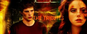 The Tributes of 12 by Liliah