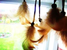 Feathers in the window by Doofiesaurus