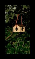 Our new bird house by J-Skellington