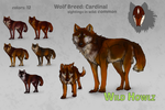 Cardinal Breed Concept by Aminirus