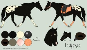 Eclipse - Mare by Whiteout-Kennels