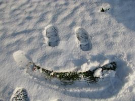 snow smile 7359 by Maxine190889