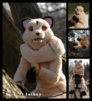 my Kirara Fursuit by Sethaa
