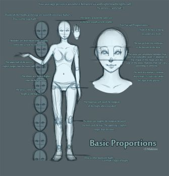 Basic Proportions by Makime