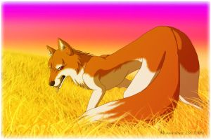 Wolf in the Field by Yazora