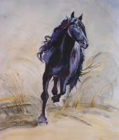 Galloping beauty by Buble