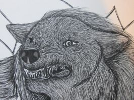 close up of big bad wolf by aleiz