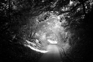 Down the lane by swandundee
