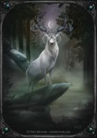 Spirit of the Stag by CLB-Raveneye