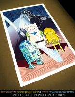 "Adventure Time ""You're My Only Hope"" 3 p by DoomCMYK"