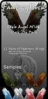 Eagle Angel Wings Zip Pack by FantasyStock