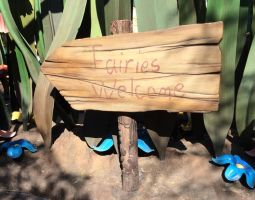 Fairies Welcome sign by BabyRC