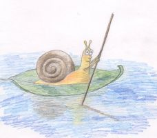 Snail by Cunami-in-october