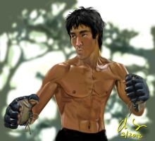 Bruce Lee Gloves by osx-mkx