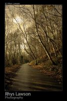 Winter Road by ChamberMonk
