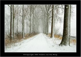 Falling Snow by sandervandenberg