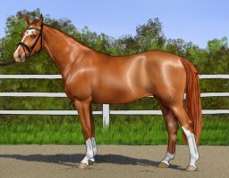 AntiFlow - AWB Mare by decors