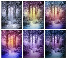 Enchanting snow actions by EliseEnchanted