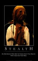 Demotivational Poster STEALTH by insteadofwords
